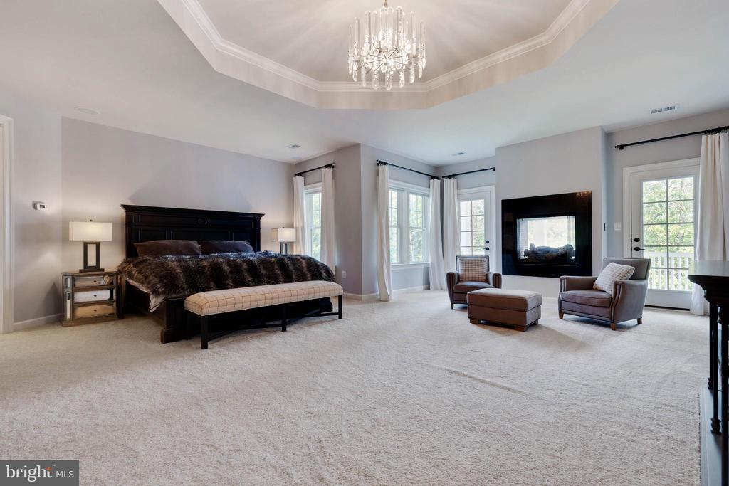 Spacious Luxury Owners Suite - 26479 BARTON PARK CT, CHANTILLY
