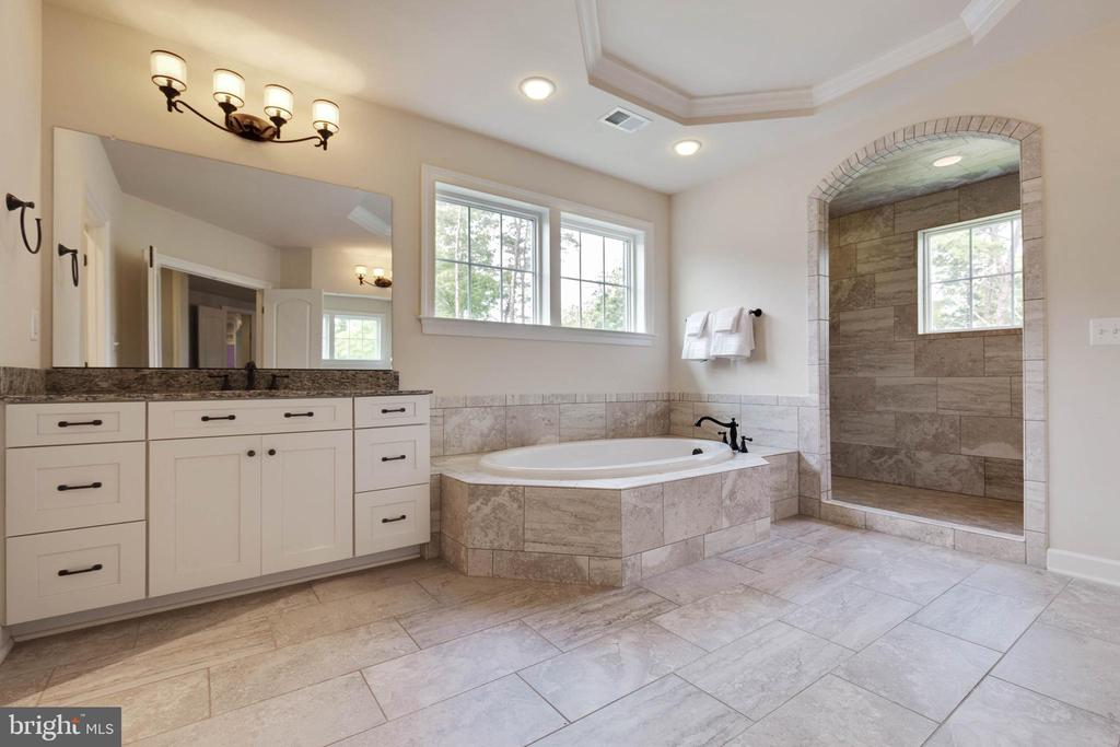 Luxury Owners Bathroom - 26479 BARTON PARK CT, CHANTILLY