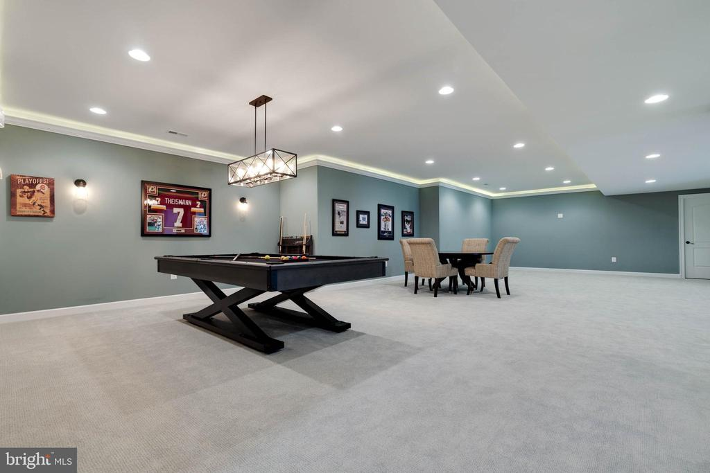 Entertainers Dream Rec Room - 26479 BARTON PARK CT, CHANTILLY