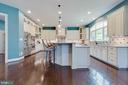 Luxury Gourmet Chef's Kitchen - 26479 BARTON PARK CT, CHANTILLY