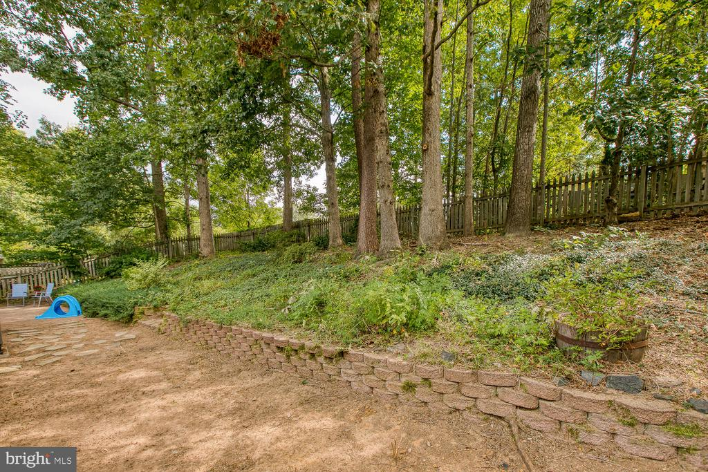 Private fenced rear yard! - 12 ROSEWOOD ST, FREDERICKSBURG