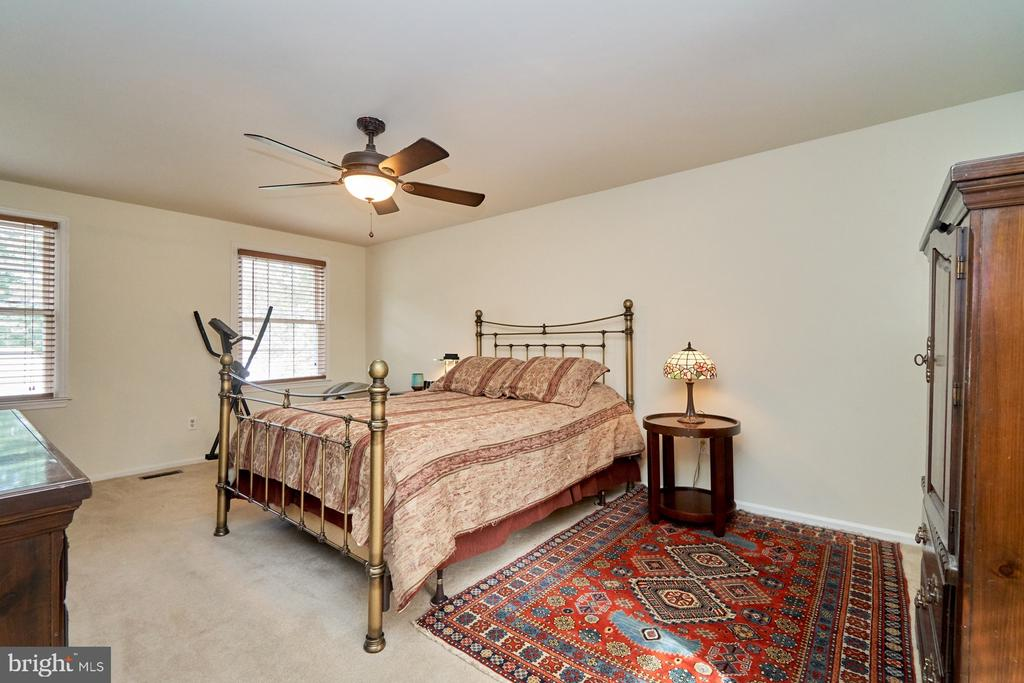 Spacious master bedroom - 14515 WILLIAM CARR LN, CENTREVILLE