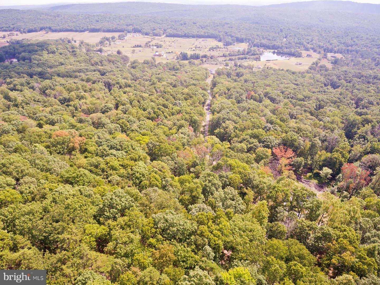 土地,用地 为 销售 在 Capon Bridge, 西弗吉尼亚州 26711 美国