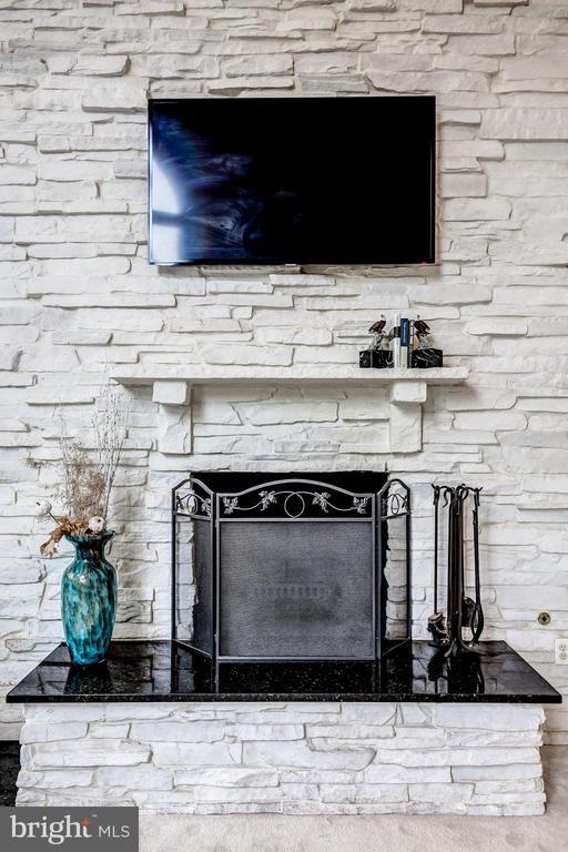 Stone Fireplace - 43546 FIRESTONE PL, LEESBURG