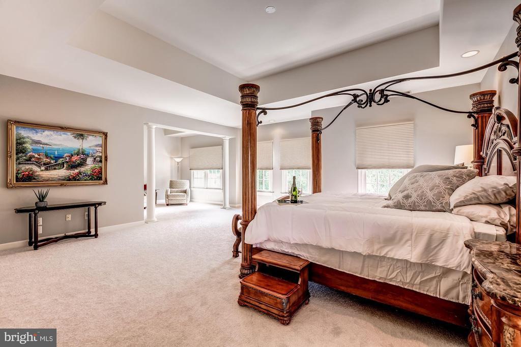 Master Suite w/Sitting Area - 43546 FIRESTONE PL, LEESBURG
