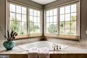 Whirlpool Tub with a View - 43546 FIRESTONE PL, LEESBURG