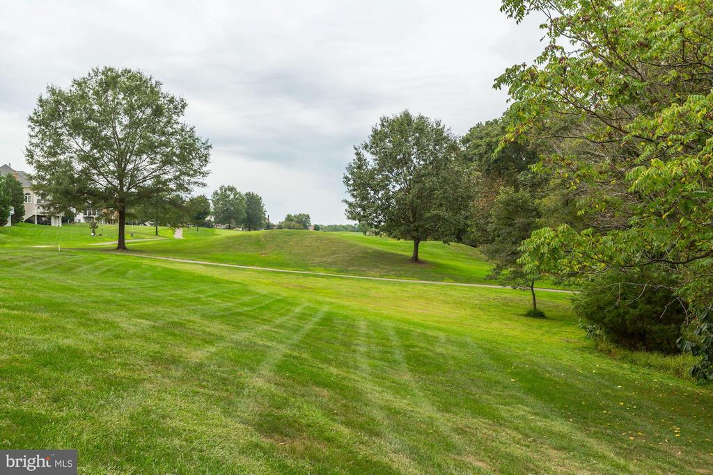 View of Golf Course - 43546 FIRESTONE PL, LEESBURG