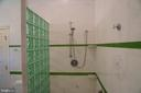 Walk-in shower stall with separate  tub - 120 QUAIL LN, NEW MARKET