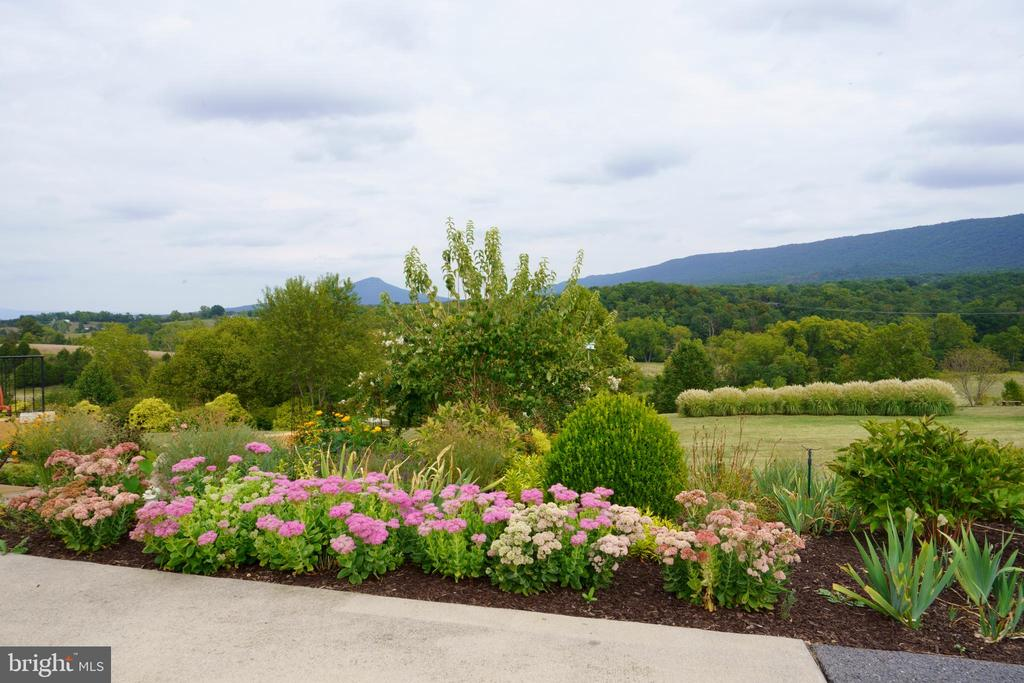 Magnificent Mt Jackson and National Park - 120 QUAIL LN, NEW MARKET