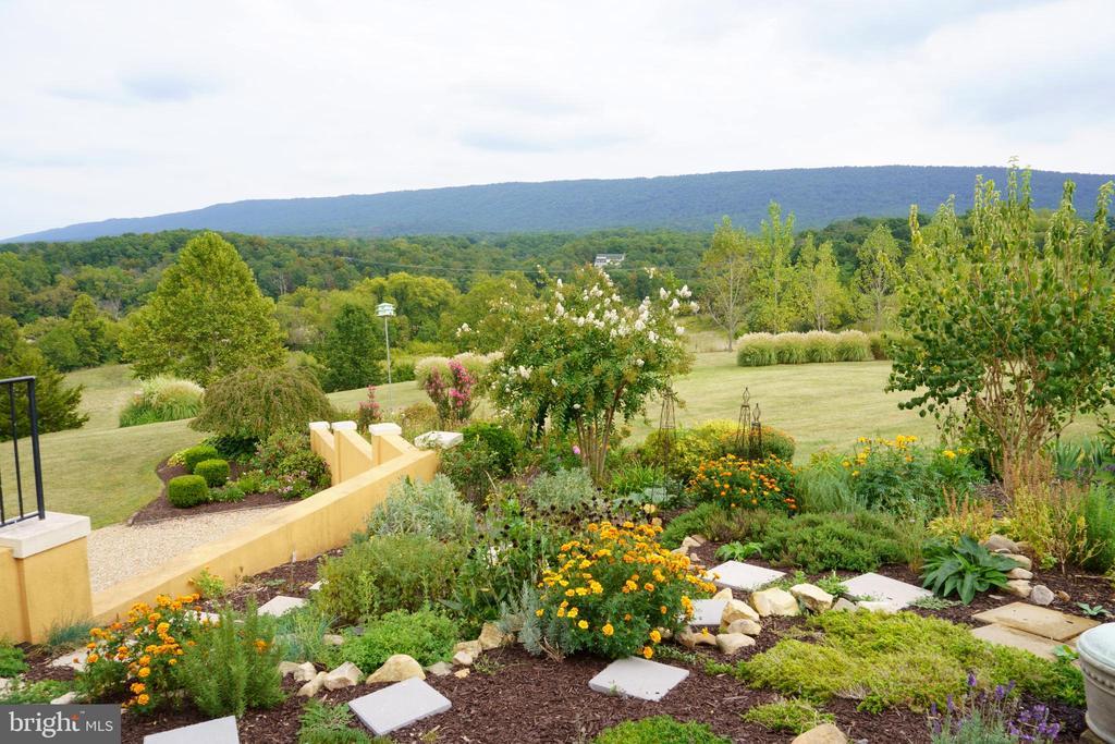 Natural cascading gardens - 120 QUAIL LN, NEW MARKET