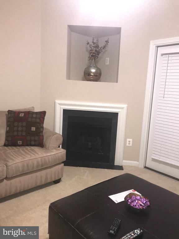 Living room/Fireplace - 20453 CHESAPEAKE SQ #103, STERLING