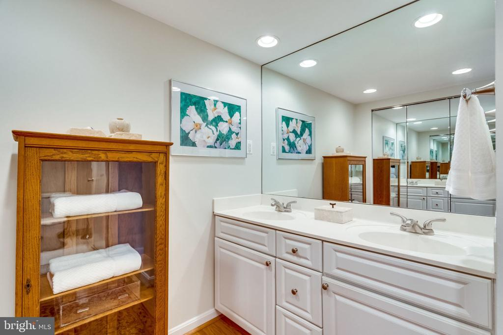Master Bath Dressing Area -Closet+ Double Vanity - 3800 FAIRFAX DR #704, ARLINGTON