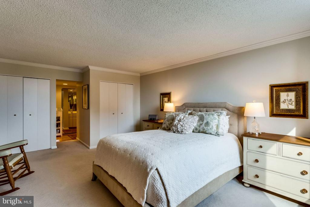 Master Bedroom - Three Generous Closets - 3800 FAIRFAX DR #704, ARLINGTON