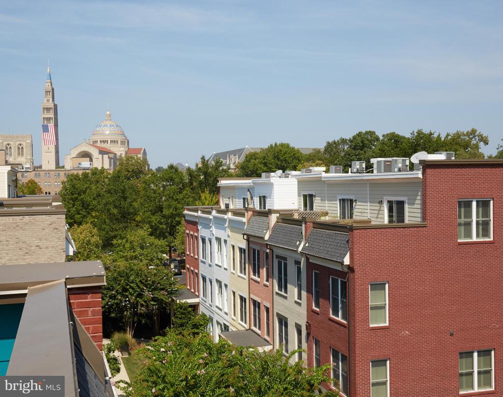 Amazing Direct Basilica Views from the Roof Deck - 549 REGENT PL NE, WASHINGTON