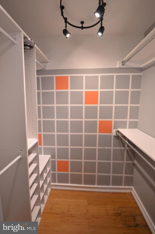 Well lit walk-in closet with built-ins - 404 GREEAR PL, HERNDON