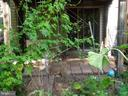 Backyard  / vie two - 14928 AMPSTEAD CT, CENTREVILLE