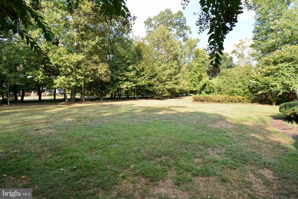 Beautiful, Large Front Yard - 6013 CHAPMAN RD, LORTON