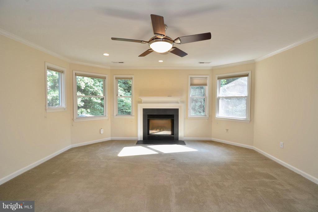 Master Bedroom has Gas Fireplace - 6013 CHAPMAN RD, LORTON