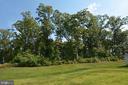 Rear yard backing to trees - 10306 SPRING IRIS DR, BRISTOW