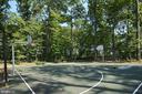 Basketball court - 10306 SPRING IRIS DR, BRISTOW