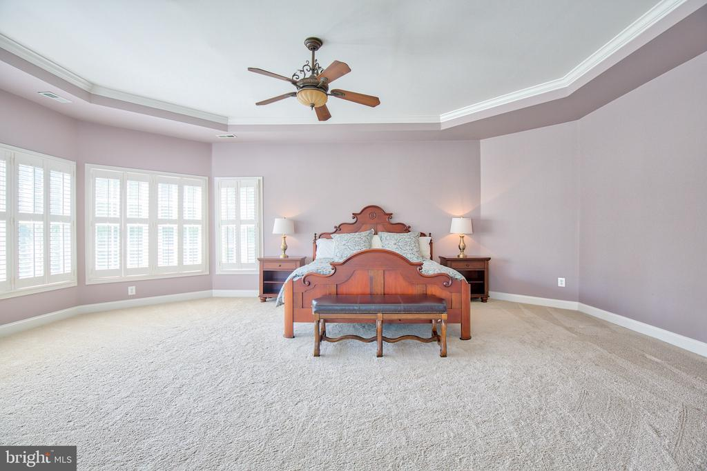Master suite with a coffered ceiling - 40771 BLACK GOLD PL, LEESBURG