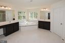 Master bathroom with dual vanities - 10306 SPRING IRIS DR, BRISTOW