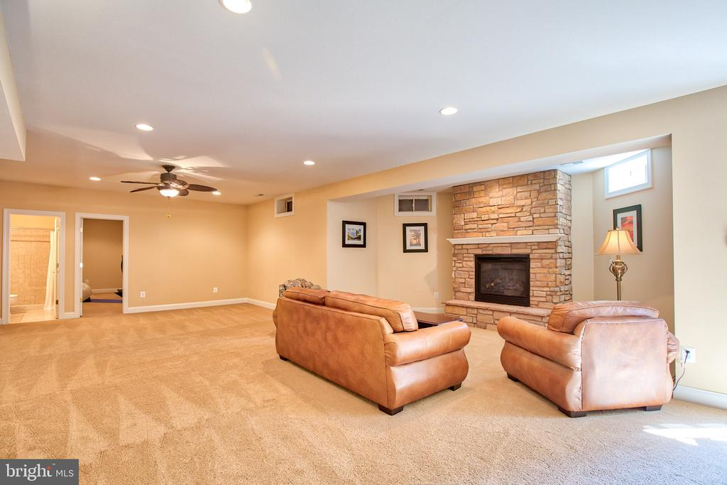 Lower Level Rec Room with Gas Fireplace - 40771 BLACK GOLD PL, LEESBURG