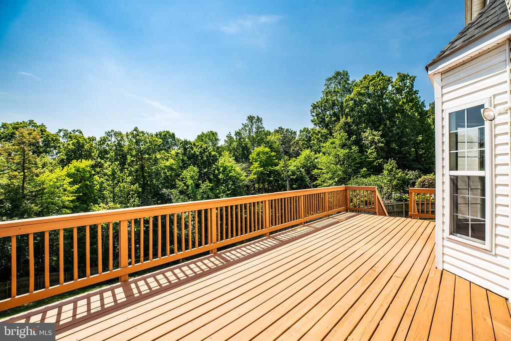 Come see this view today! - 92 BRUSH EVERARD CT, STAFFORD