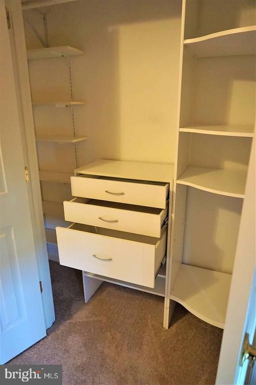 Al upstairs bedroom have closet organizers. - 6205 HAWSER DR, KING GEORGE