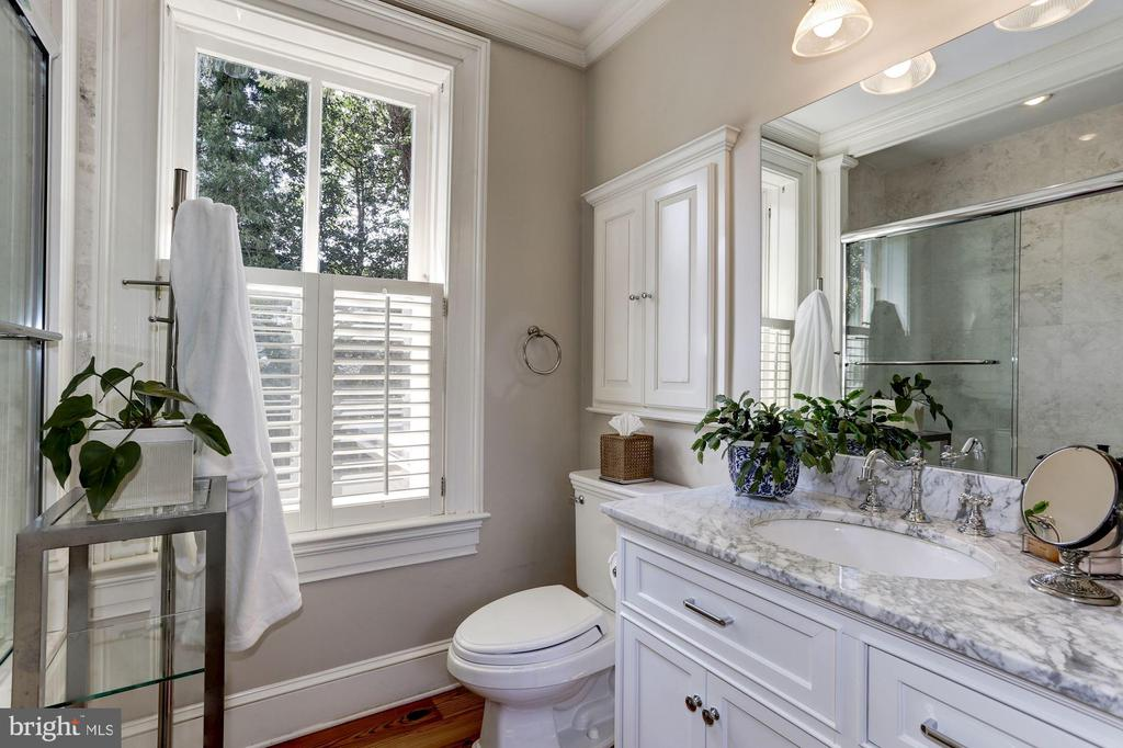 Luxurious guest bathroom - 209 S LEE ST, ALEXANDRIA