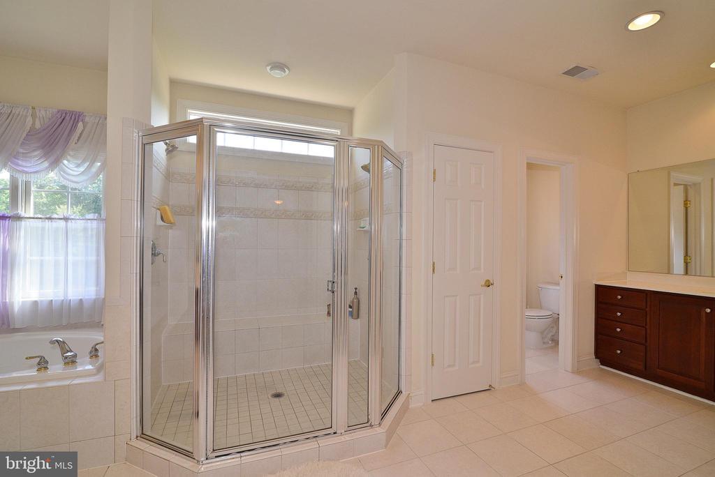 Master Bathroom - 7901 SOUTH RUN VW, SPRINGFIELD