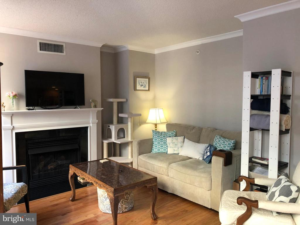 Fireplace makes living room so cozy - 1201 N GARFIELD ST #507, ARLINGTON