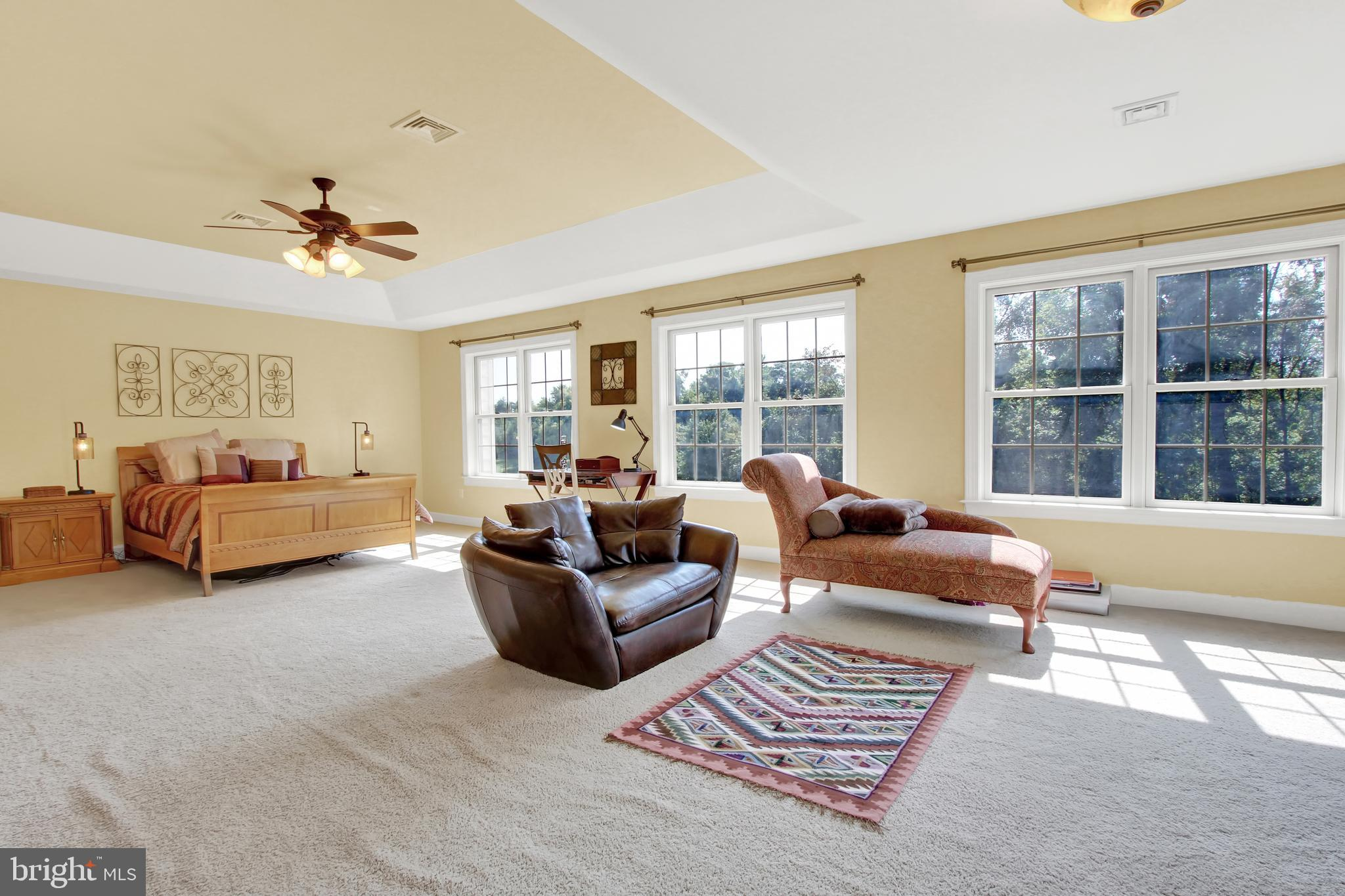 Natural lighting, french doors, tray ceiling