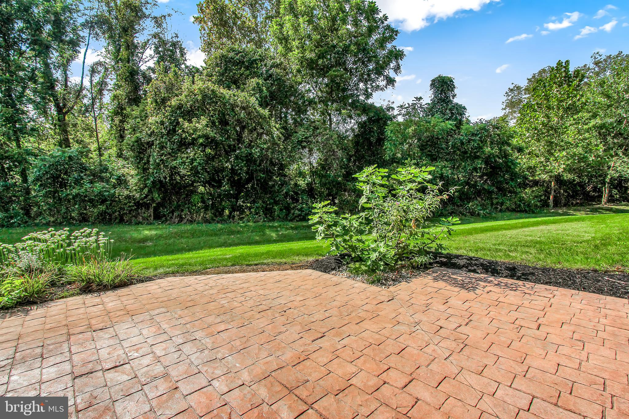 Beautiful views of private, wooded backyard