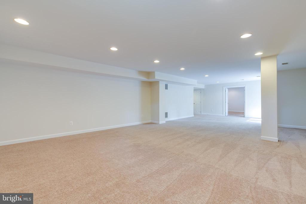 Large Rec Room - 43349 ROYAL BURKEDALE ST, CHANTILLY