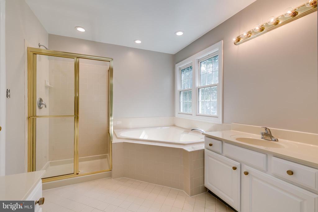 Master Bathroom - 43349 ROYAL BURKEDALE ST, CHANTILLY