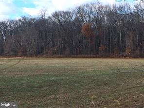 土地 為 出售 在 Chesterfield, 新澤西州 08515 美國