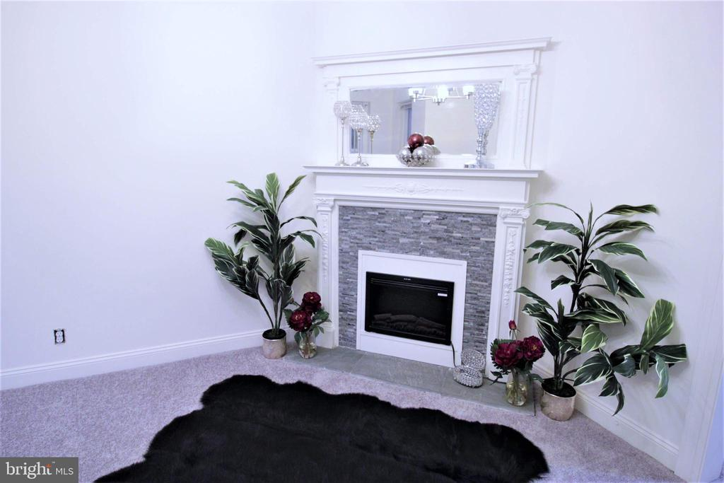 Lovely Electric Fireplace in Living Room - 131 R ST NE, WASHINGTON