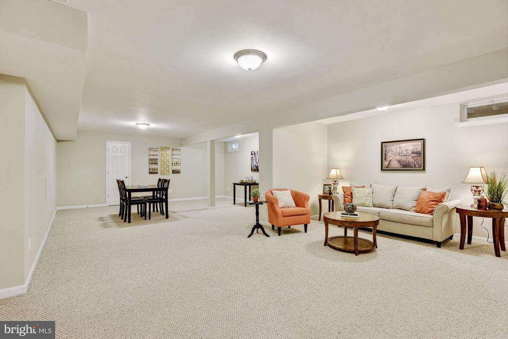 Lower level rec room with lots of space - 42944 DEER CHASE PL, ASHBURN