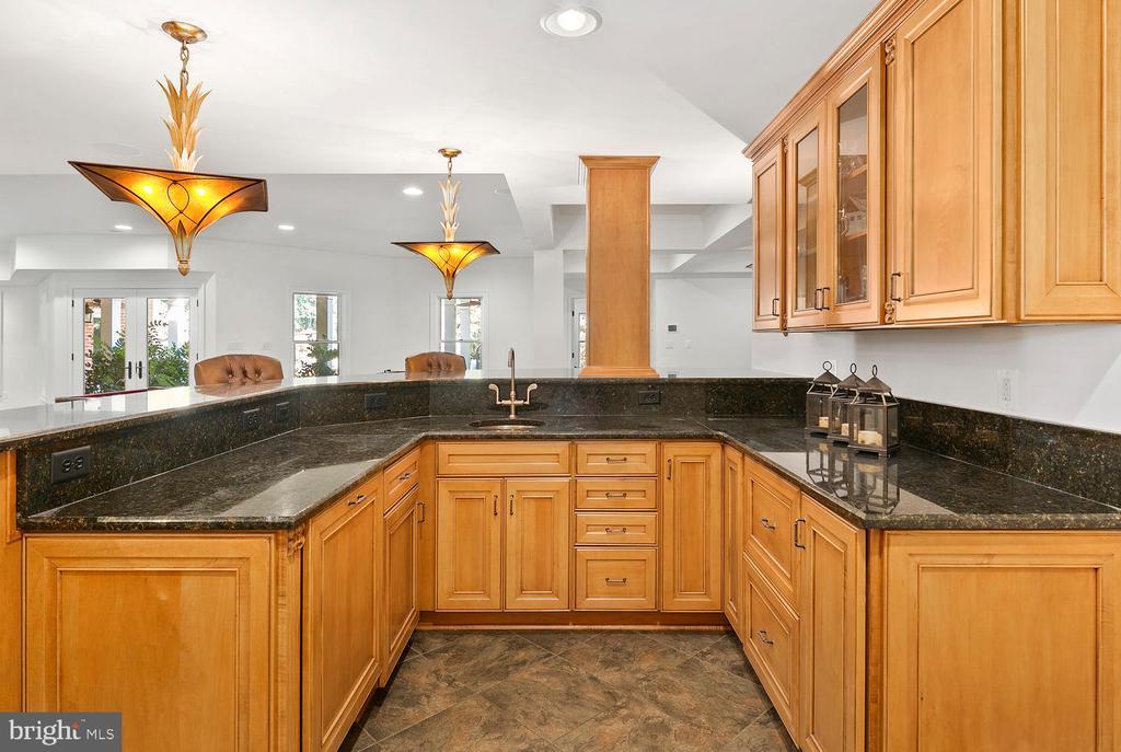 Lower level bar with fridge and dishwasher - 9110 DARA LN, GREAT FALLS