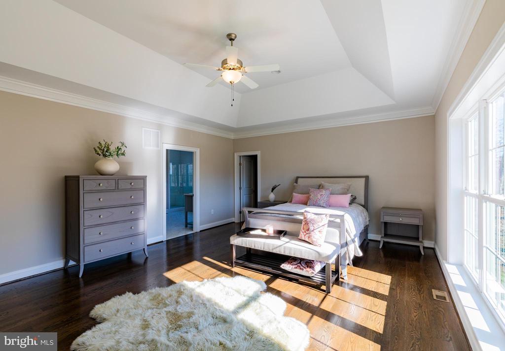 First Floor Master Bedroom - 10605 SPRINGVALE LN, SPOTSYLVANIA