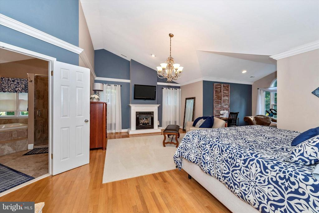 Huge Master Bedroom with vaulted ceilings - 5193 ALMERIA CT, MOUNT AIRY