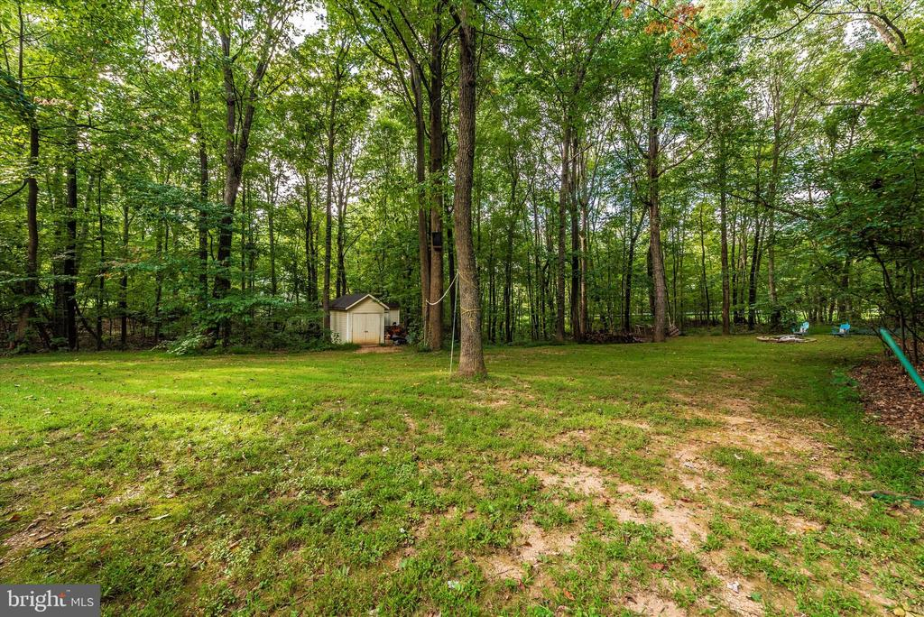 Side yard with shed - 5193 ALMERIA CT, MOUNT AIRY