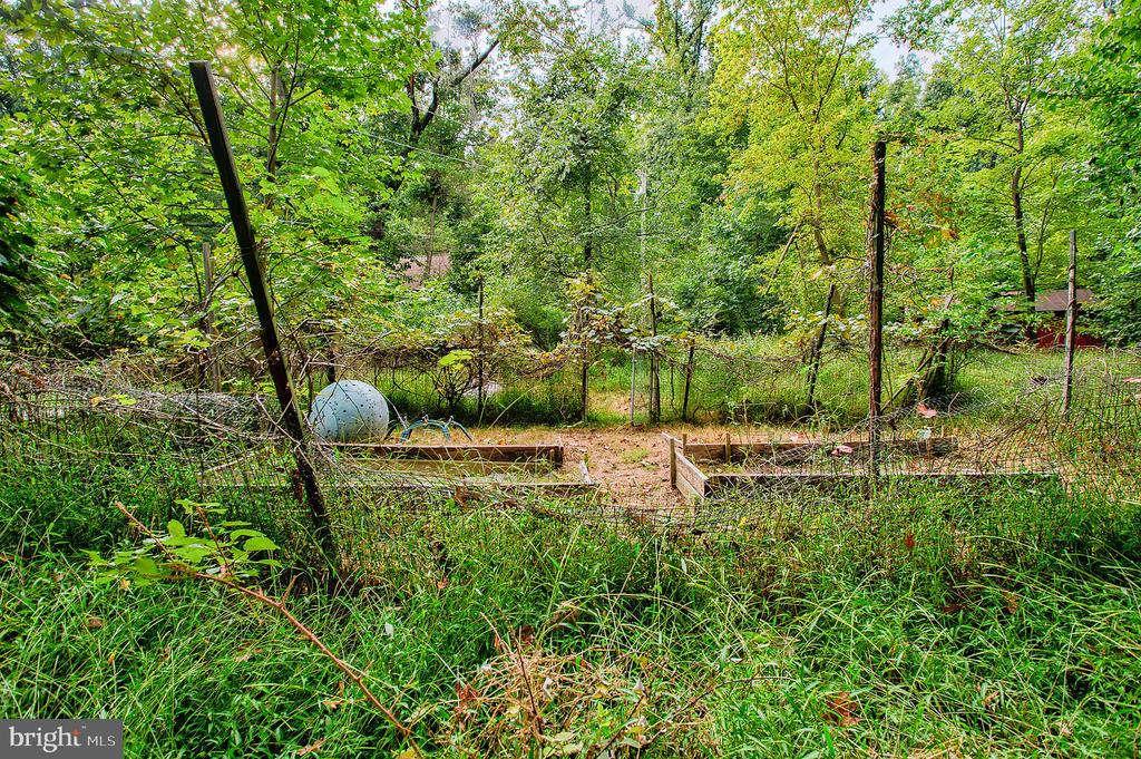 Yard and garden - 16657 TREE CROPS LN, ROUND HILL