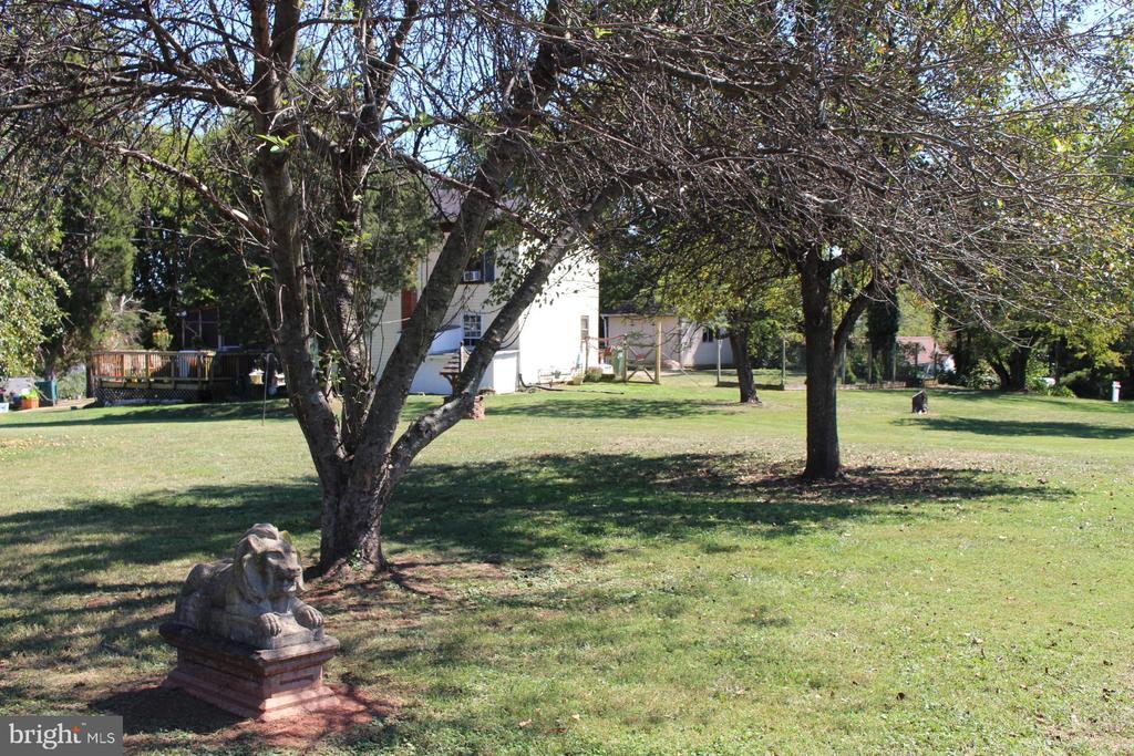 Exterior - Black Walnut Trees - 7643 CHESTNUT ST, MANASSAS