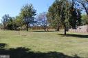 Exterior - Pear Trees - 7643 CHESTNUT ST, MANASSAS