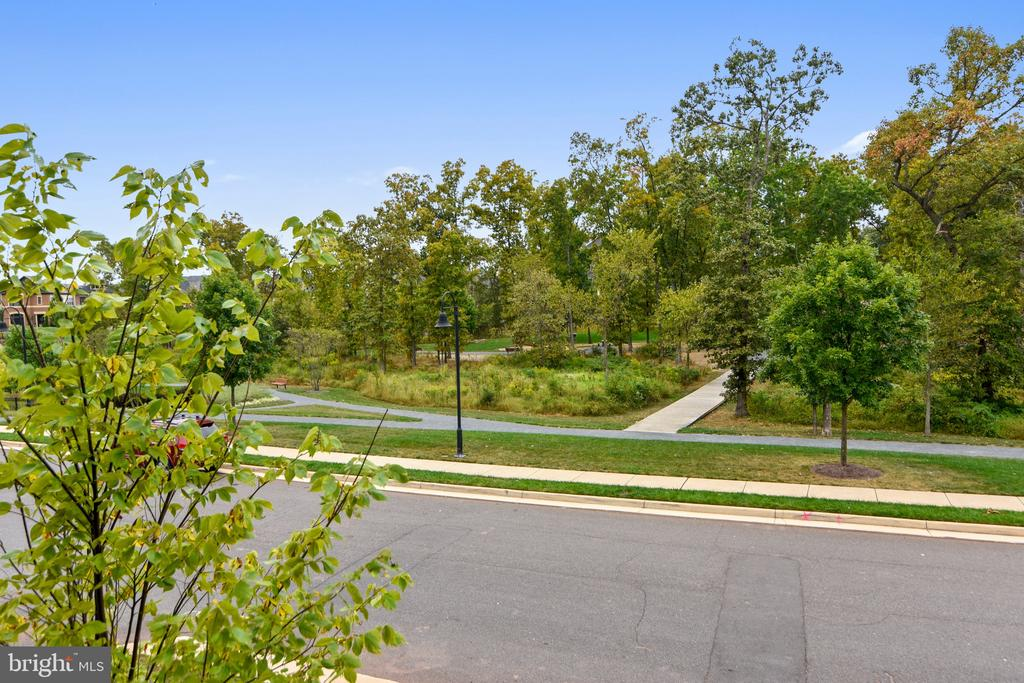 View of the Park - 20384 NORTHPARK DR, ASHBURN