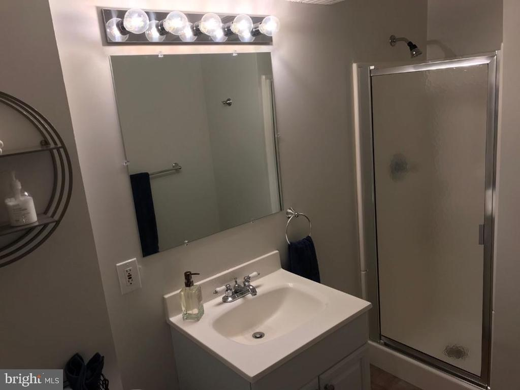 In Law Suite - Full Bath - 4300 CLAGETT PINE WAY, UNIVERSITY PARK