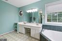 Just Look at this Master Bath!!! - 3612 E GLEN DOWER DR, FREDERICKSBURG
