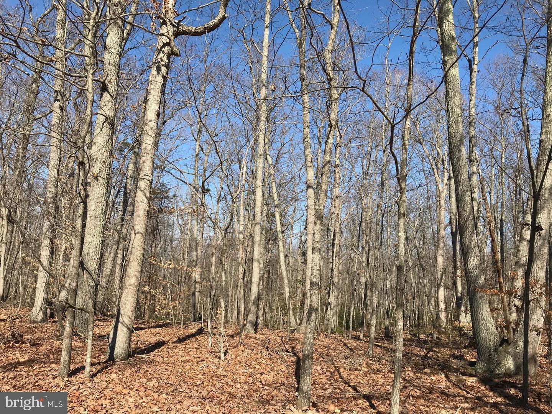 土地 為 出售 在 Elkwood, 弗吉尼亞州 22718 美國
